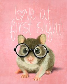 A small mouse with glasses on a rustic pink background (print 6x8) Illustration fine art prints