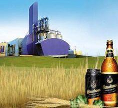Há alguns dias a imprensa vem noticiando a abertura, em uma cidade do estado do Ceará, de uma fábrica de cervejas da Companhia Brasileira de Bebidas
