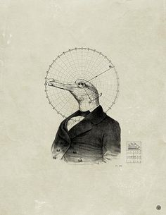 birdman geometry - mark weaver