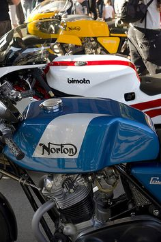 mototerra:    Look at this sexy trio…classic racing motorcycle porn.