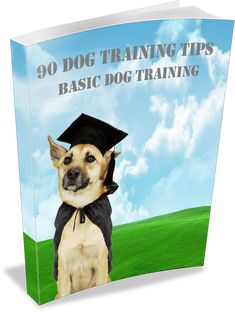 """How to Buy a Shock Dog Collar. Inside this eBook, you will discover the topics about what is a """"shock"""" no bark collar, why dogs bark, the pros and . Stop Puppy From Biting, Puppy Biting, Types Of Shock, Dog Shock Collar, Basic Dog Training, Buy A Dog, Separation Anxiety, Dog Barking, Old Dogs"""