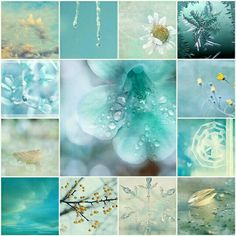 ❥ turquoise collage | moodboard