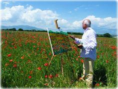 franco azzinari - Google Search Lavender Fields, Wild Flowers, Poppies, Grass, Google Search, Wildflowers, Grasses, Poppy, Poppy Flowers