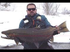 Salmon River Pulaski NY Fishing Guide Steelhead Report - YouTube