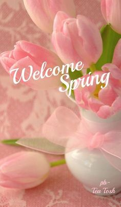 quenalbertini: Welcome Spring