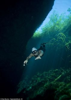 Carlos Coste free diving at a depth of seven metres using a technique he has perfected