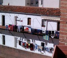 En el corazón de Chamberí, a menos de quinientos metros de la Castellana y la Plaza de San Juan de la Cruz, encontramos una anécdota urbana entrañable y peculiar. Es una anécdota escondida entre gr...