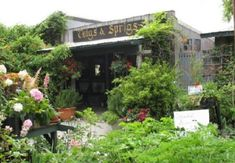 Do you love finding beautiful slices of nature in the Hoosier state? Then you'll love this incredible greenhouse restaurant on an Indiana farm. Greenhouse Restaurant, Outdoor Greenhouse, Indiana Dunes, Herb Farm, Delicious Restaurant, Garden Pictures, Places To Eat, Lunch Places, Day Trips
