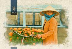Vietnam - Infografía para catálogo de viajes Vietnam, Illustration, Painting, Visual Identity, Sun Art, Photo Retouching, Visual Arts, Graphic Art, Digital Art