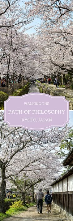 travelyesplease.com | The Path of Philosophy- Kyoto's Prettiest Cherry Blossom Walk (Blog Post) | Kyoto, Japan