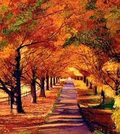 Wish my driveway could look like that--- 100 acres in the mountains please!