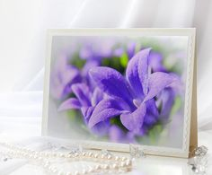 Greeting blank photo note card with purple campanula. Great for any occasion.    #note #card #any_occasion #white #greeting #gift