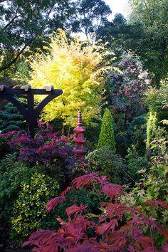 Oriental autumn beauty by Four Seasons Garden, via Flickr