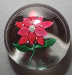 Antique Boston & Sandwich Glass Company (B) Red Double Poinsettia Paperweight.  circa 1869 - 1888.