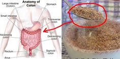 There are a lot of people suffering from colon disease in the world,but what is the reason ? Well, in most cases it is food and the eating habits. Regardless that there are different pills and drug…