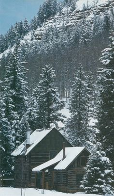 Log cabin in the trees. Reminds me of Colorado - Really miss it!!