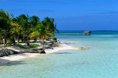 Cayo Coco (Cuba): el paraíso de los flamencos salvajes