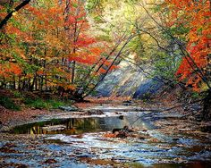Autumn At Its Best by Robert Harmon!