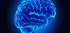 Scoperta l'origine dell'Alzheimer che fa luce sulla patologia