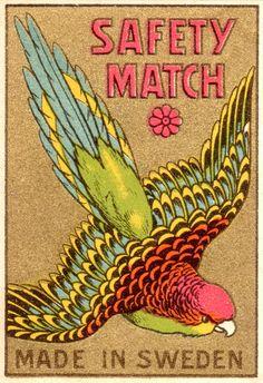 vintage match box made in Sweden #bird
