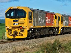KiwiRail shakes off earthquake impact - Railway Gazette Train Pictures, Diesel Locomotive, Shake It Off, Train Station, Auckland, Long Distance, Trees To Plant, Over The Years, New Zealand