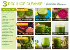 Our 3 Day Juice Cleanse | Omega Juicers | Leanne Vogel, Healthful Pursuit