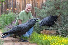 Twice life-size ravens - bronze sculpture Crow Art, Raven Art, Bird Art, Bird Sculpture, Animal Sculptures, Quoth The Raven, Jackdaw, Crows Ravens, Bird Feathers