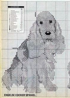 Filet Crochet Charts, Cross Stitch Charts, Cross Stitch Embroidery, Cross Stitch Patterns, Cockerspaniel, Dog Crafts, Dog Pattern, Cross Stitch Animals, Tapestry Crochet