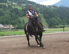 Lebhafte, talentierte Norikerstute zu verkaufen - Pferde kaufen in Kapfenberg…