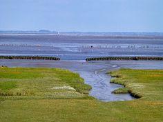 de Wadden vanaf Hornhuizen, met uitzicht op Schiermonnikoog