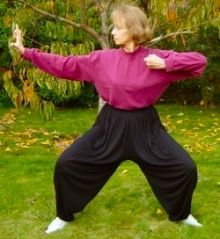 Learn Qigong exercises and Tai Chi exercises online, Tai Chi Video, Tai Chi Exercise, Learn Tai Chi, Health Heal, Self Massage, Qigong, Rheumatoid Arthritis, Strike A Pose, Medical Conditions