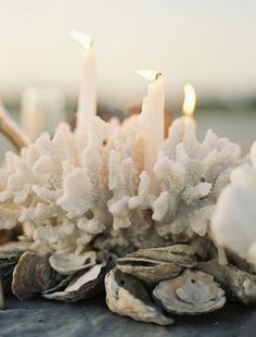 Great idea for an informal centerpiece. Sculptural coral, candles and shells.