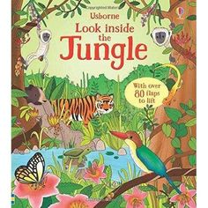 Usborne Look Inside Our world 6 Books Collection Set ( Seas and Oceans, Nature,Our World,Animal Homes,Jungle,Space)