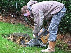 Cacher une souche d 39 arbre en cr ant un parterre jardin et maison trucs et astuces pinterest - Produit destructeur de souche d arbre ...
