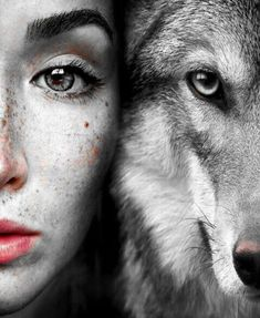 Read from the story Fotos para tus Portadas 3 by Melani_BP_ with 905 reads. Creative Photography, Animal Photography, Wolves And Women, Vegvisir, Wolf Pictures, Creatures Of The Night, Tier Fotos, Image Manga, Werewolf