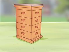 Le persone che hanno un giardino e apprezzano l'importanza delle api nel loro ambiente naturale, potrebbero provare a tenere le proprie. Le scatole per api, o arnie, oggi vengono disegnate sia per incoraggiare la salute delle api sia per...