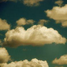 fluttering and dancing in the breeze by moosebite, via Flickr
