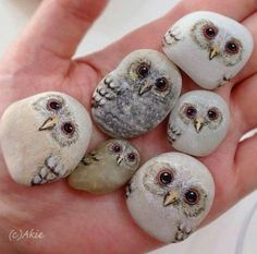 I'm still in love with these after all these years.these Painted Owl stones are just to cute! :) Have you tried painting stones like this before? Pebble Painting, Pebble Art, Stone Painting, Diy Painting, Rock Painting, Pierre Decorative, Owl Rocks, Owl Crafts, Easy Crafts