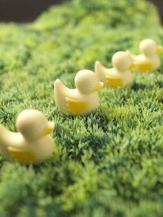 Four cute chocolate ducks.