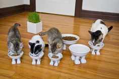 These food and water bowls: | 15 Cat Products You Didn't Know You Needed