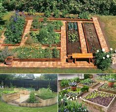 9. Lay the ground with red bricks or pebble and place cedar and pine planks garden boxes on it to plant your veggies: