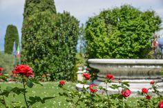 ROSES IN VILLA MARIA HOTEL PARK www.villamaria.tv #desenzano #gardasee #lagodigarda