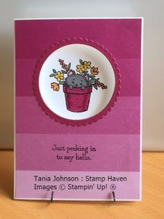 Tania Johnson : Stamp Haven: Pretty Kitty Window Card, 2017 - 2018 Annual Catalogue, Stampin' Up!