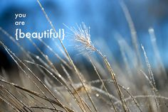 You are beautiful. Courtesy of Finding Serendipity