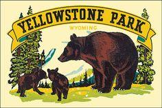 YELLOWSTONE PARK WYOMING BEAR VINTAGE POSTER REPRO IMAGE 10x16 #Vintage