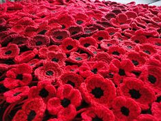 crocheted poppies, 5 versions by Suzanne Resaul - This pattern is available as a free Ravelry download We made these for an art installation, not to wear.