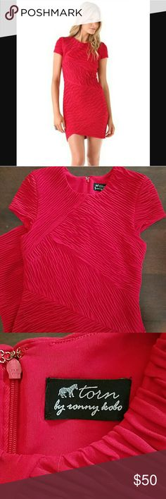 🐙 SAT SALE 🐙Torn by Ronny Kobo Red Bodycon Dress Sexy and sophisitcated dress in excellent condition. Perfect for date night, weddings, or a night out in Vegas. Smoke free home. Torn by Ronny Kobo Dresses
