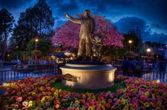 """""""Afterglow at the Hub"""" Partners Statue on Main Street #disneyland from Kevin Crone at www.toursdepartingdaily.com - #toursdepartingdaily #disney"""