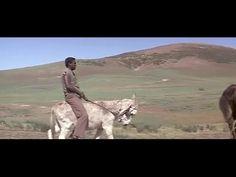 Skin Game - Full Movie Western Comedy Starring James Garner Louis Gosset...