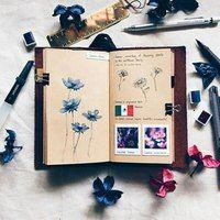 Как оформить свой личный дневник| ЛД | ВКонтакте Garden Gifts, Book Gifts, Notebook, Notes, Illustration, Pictures, Inspiration, Gardening, Building Information Modeling